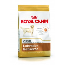 ROYAL CANIN LABRADOR RETRIEVER